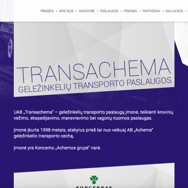 Transachema website development